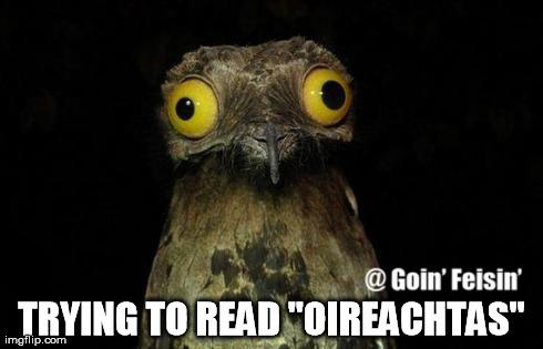 Read Oireachtas